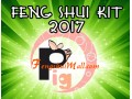 Feng Shui Kit 2017 for Boar