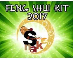 Feng Shui Kit 2017 for Snake