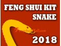 Feng Shui Kit 2018 for Snake