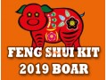 Feng Shui Kit 2019 for Boar