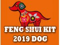 Feng Shui Kit 2019 for Dog