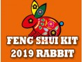 Feng Shui Kit 2019 for Rabbit