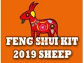 Feng Shui Kit 2019 for Sheep