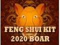 Feng Shui Kit 2020 for Boar