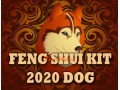 Feng Shui Kit 2020 for Dog