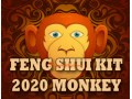 Feng Shui Kit 2020 for Monkey