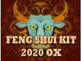 Feng Shui Kit 2020 for Ox