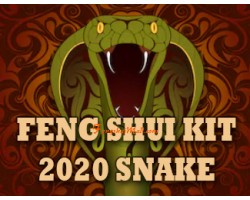 Feng Shui Kit 2020 for Snake