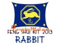 Feng Shui Kit 2013 - Horoscope Rabbit