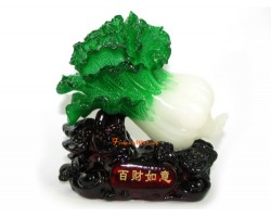 Feng Shui Pak Choy for Good Luck