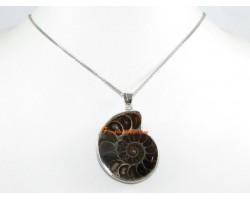Halved Ammonite Pendant (L)