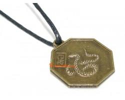 Horoscope Coin Pendant Amulet - Snake
