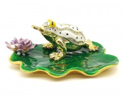 Lucky Money Frog On Waterlily Leaf