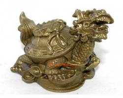 Brass Dragon Tortoise on Wealth