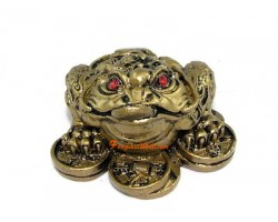 Money Frog on Coins to Attract Wealth