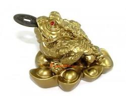 Money Frog on Ingots for Wealth Luck