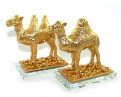 Pair of Golden Camel