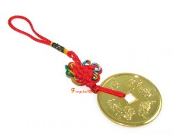Feng Shui Pi Yao Tai Sui Coin Protection Amulet