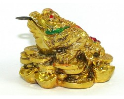 Three Legged Wealth Frog