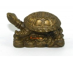 Brass Tortoise on Gold Ingots and Coins