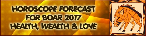 Horoscope Feng Shui Forecast 2017 for Boar